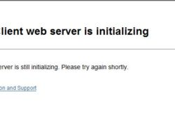 The Vsphere Client Web server is initializing- Issue 6.5. Problemi