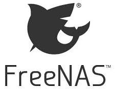 Freenas the installation and ip configuration